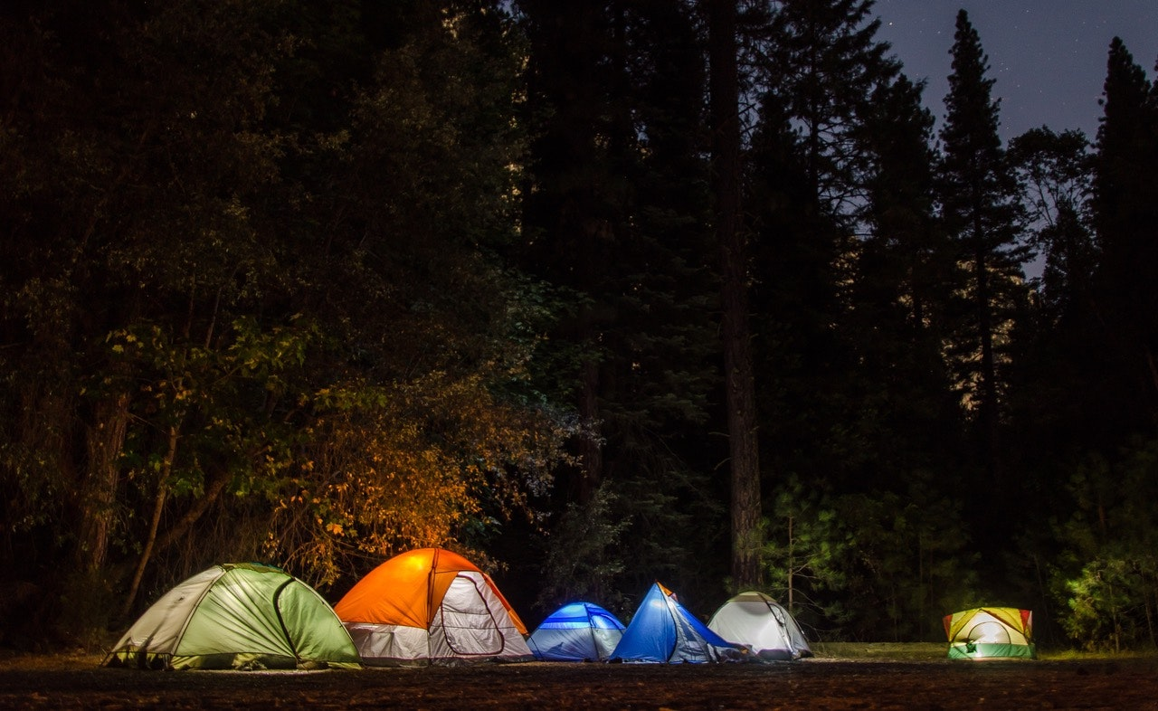 six-camping-tents-in-forest-699558